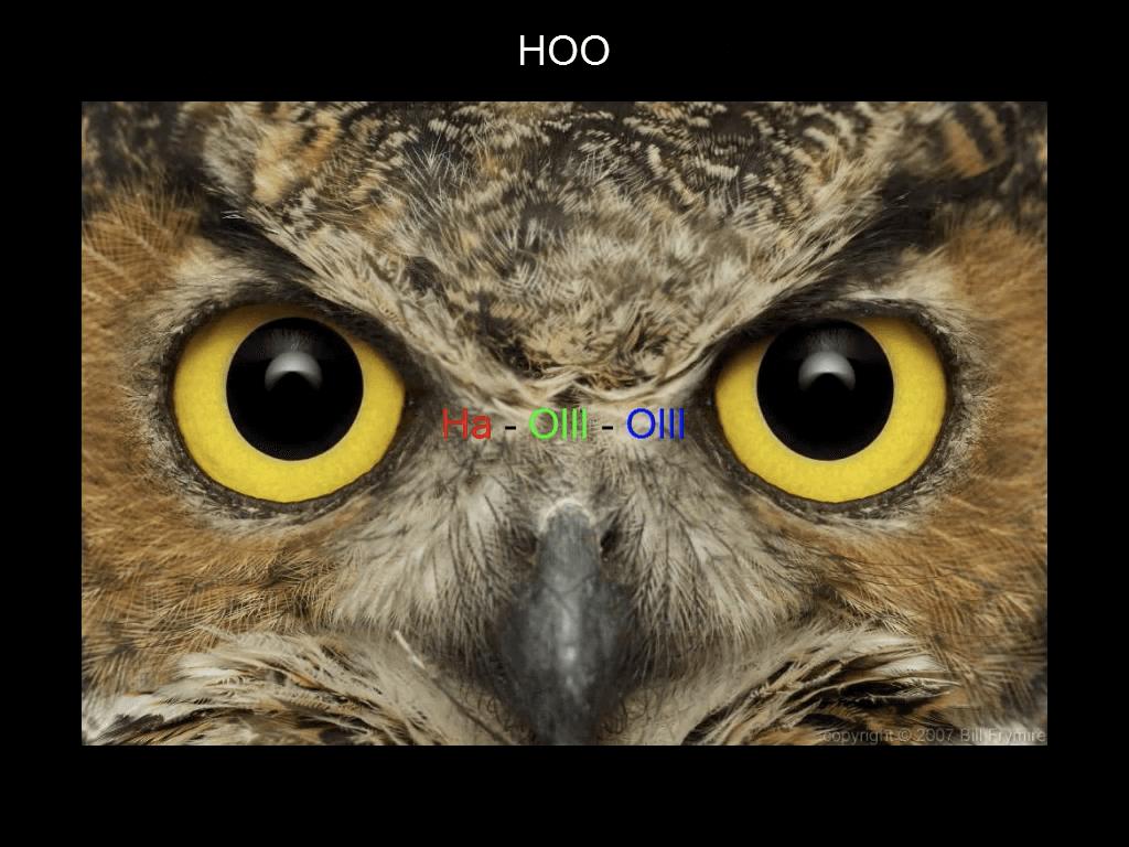 PI-15_Narrowband-1-0012-w512
